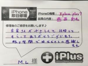 IMG_6151